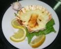 Mediteranska jela (Mediterran food)